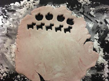 お米粉でいちごのクッキー ビションフリーゼ おもち  128B9674-4F66-4DEE-B2D1-CADE2878A31A-380x285