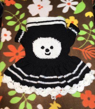 シロの母さん印のセーター(^o^) ビションフリーゼ おもち  99FC2AEE-07C8-4C41-B638-832349215F2A-331x380