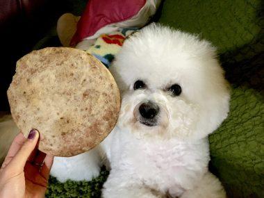 お米粉でいちごのクッキー ビションフリーゼ おもち  AFC08AEF-ACF2-4285-94D3-BEC879FD7F60-380x285