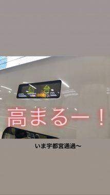 おも、仙台へ行く!( ˙-˙ ) ビションフリーゼ おもち  29507F27-2657-488A-9FE6-749FB29356F8-214x380