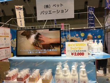 東京インター\(^o^)/ ビションフリーゼ おもち  AC0A9B78-90A7-4BA1-8557-25935B8F602C-380x285