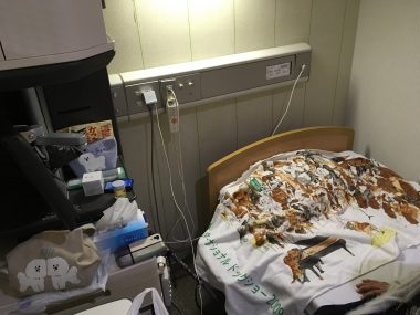 病院へお見舞い ビションフリーゼ おもち  3619551D-B3DF-49C3-A032-397906E97A6F-380x285